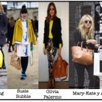 ¿Qué es Fashionista?