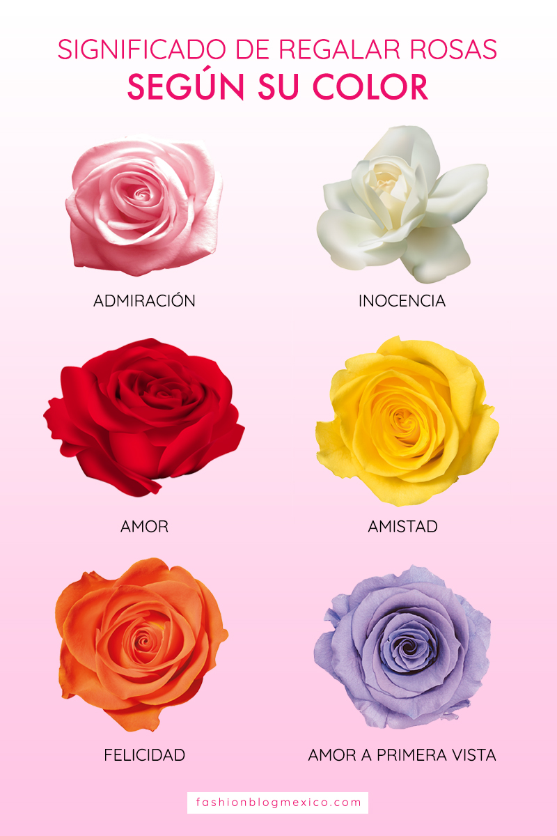 significado de regalar rosas seg n su color. Black Bedroom Furniture Sets. Home Design Ideas